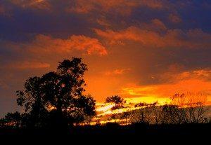 Parish Sunset